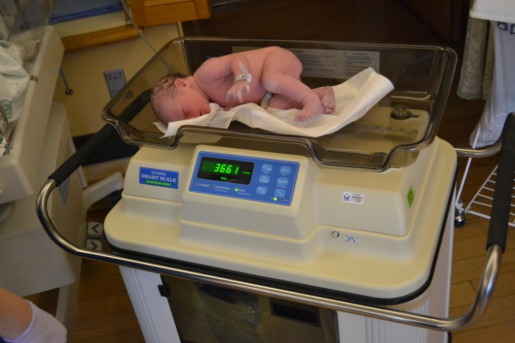 He aced all his tests.  This is the weigh in.  That's 8lbs 1oz in US talk.