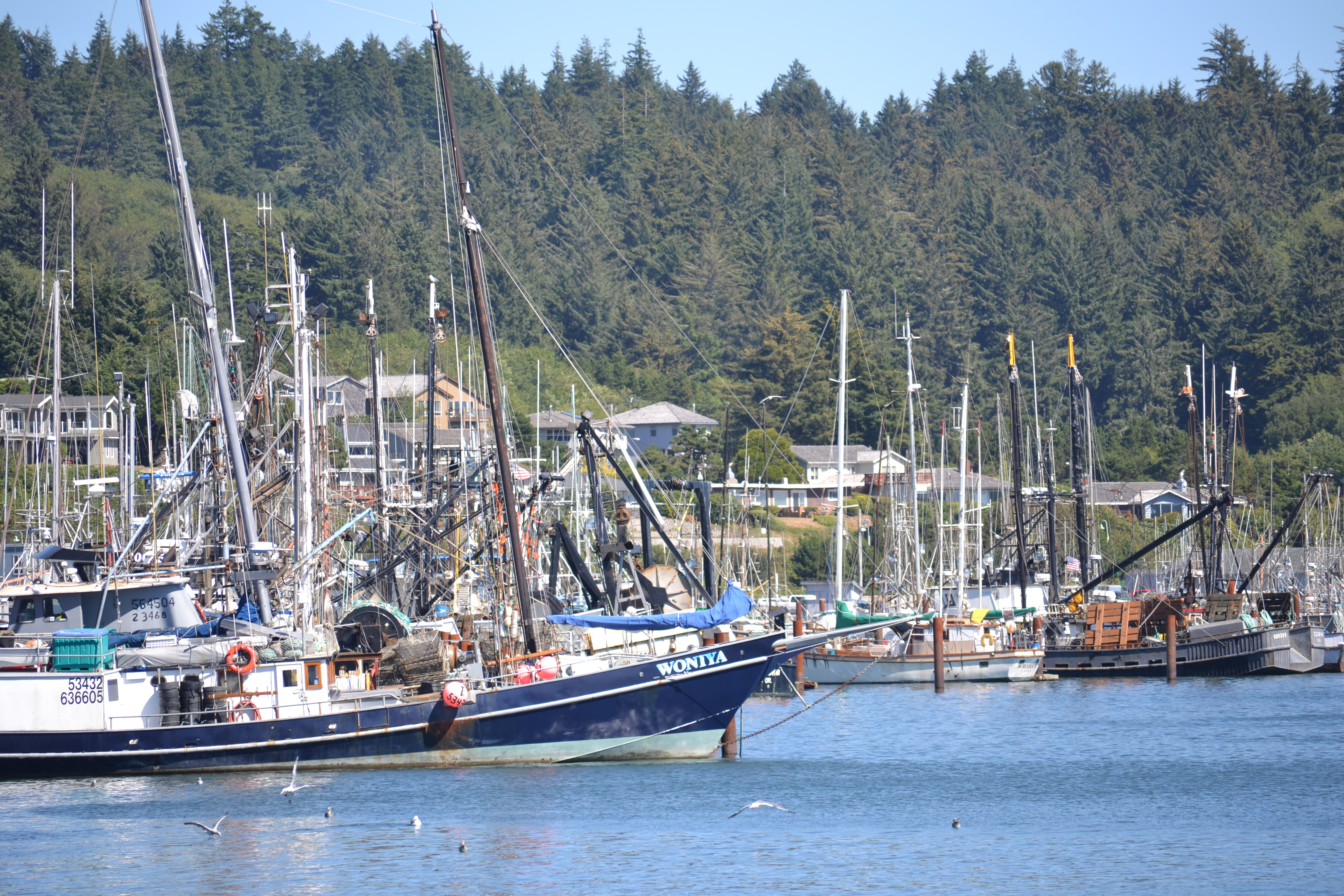 Ending summer at the oregon coast travelling with ana for Newport oregon fishing