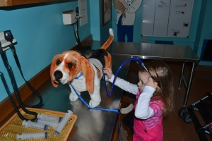 I spent the morning working as a vet in the animal hospital at the Portland Children's Museum.