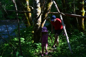 After breakfast on our cabin deck we took a stroll through the woods to Horse Creek.