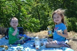 4 picnic