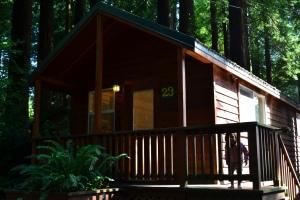 7 cabin