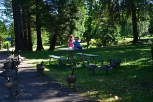 The first picnic table we choose was a little too popular with the local park residents.
