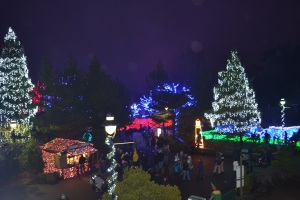 Every Christmas the Oregon Zoo sparkles.
