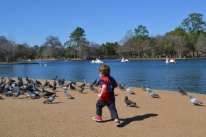 After the zoo we soaked up a little more sun in Hermann Park (we're not sure if the zoo is IN Hermann Park or just beside it) but we think that's our favourite Houston spot so far and sure to be back there soon.