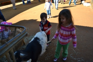 And the petting zoo was another highlight.