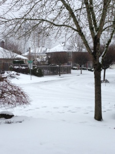 But not as cold as it is back in Portland!  Our neighbour sent us this picture of our old house (and yep, the road in front of the house).  It has been unseasonally cold there too.