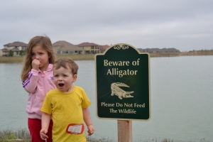 Oh no!  That's not a bear!  That's an ALLIGATOR!  ARRRRGH!