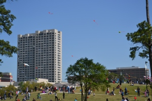 Herman park held a kite festival today.