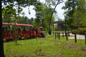 Choo!  Choo!  We just love Herman Park.