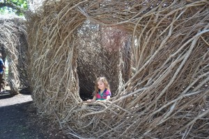 Play in a twig house (I wonder if the big bad wolf could blow this down!)