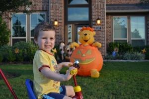 Pooh Bear is stuck in a pumpkin!!  Oh dear!