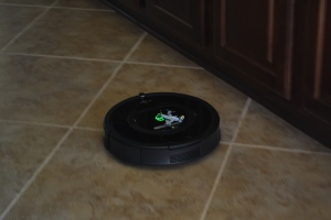 We are in fact the proud owners of a Roomba / small aircraft carrier.