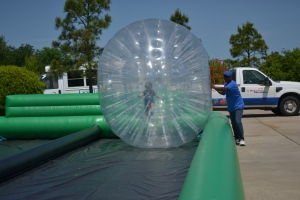 This year they had hamster balls too!