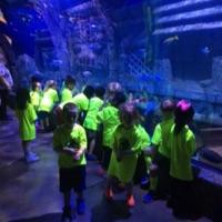 Rafa and his mates went to the downtown aquarium.