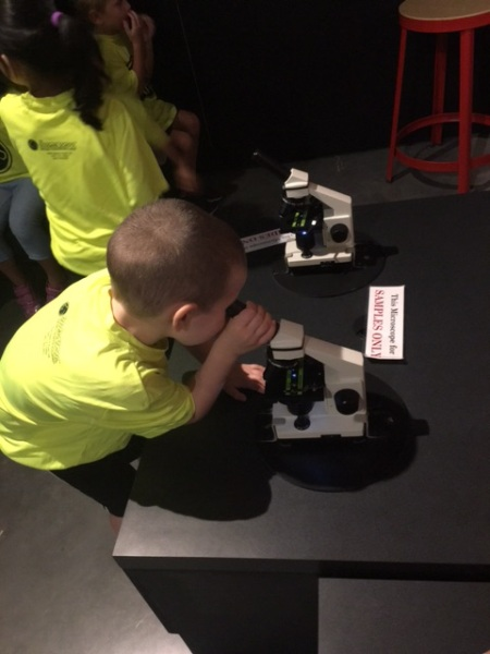 Rafa microscope field trip