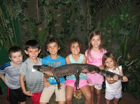 This morning we went to hang out with gators at Gator Beach.