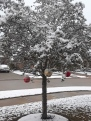 snow day 13